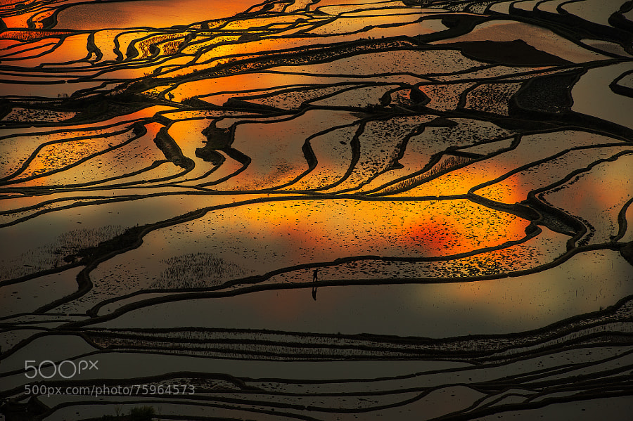 Photograph farm in yuanyang by Nikon Sek on 500px