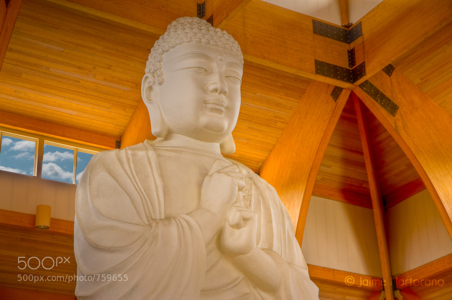 Photograph The Great Buddah by Jaime Martorano on 500px
