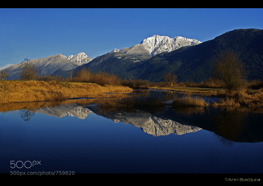Photograph Reflections by Ann Badjura on 500px