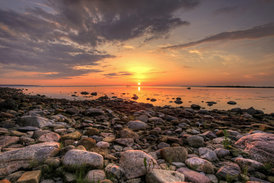 Summer sunset by Aleksandr R. on 500px.com
