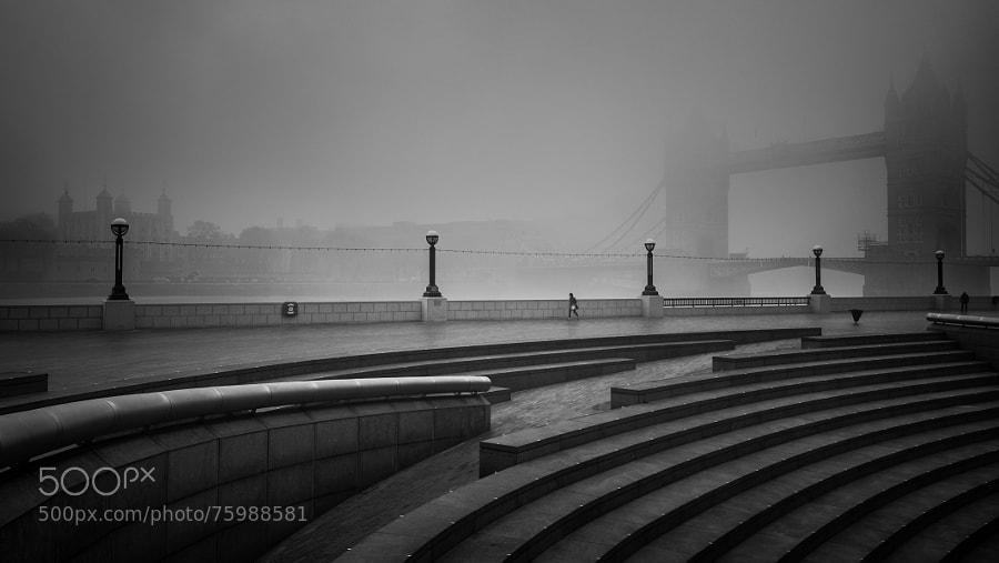 London Fog 2014