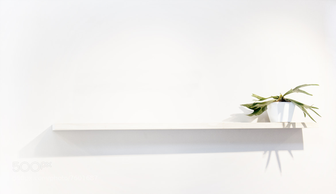 Photograph White-Blanco by Ivan Blanco  on 500px