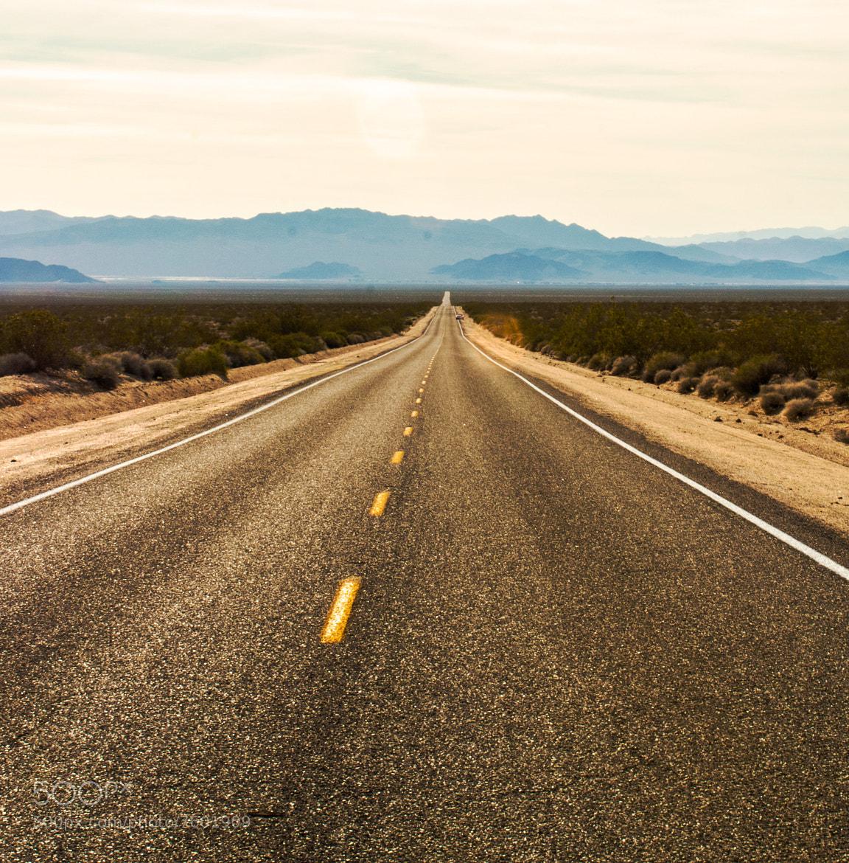 Mojave Desert Native Plants: Photograph Mojave Desert Road By Jason Higbie On 500px