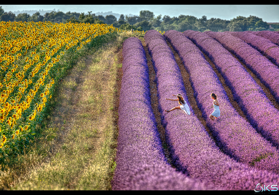 Girls in Lavender by Karim SAARI on 500px.com