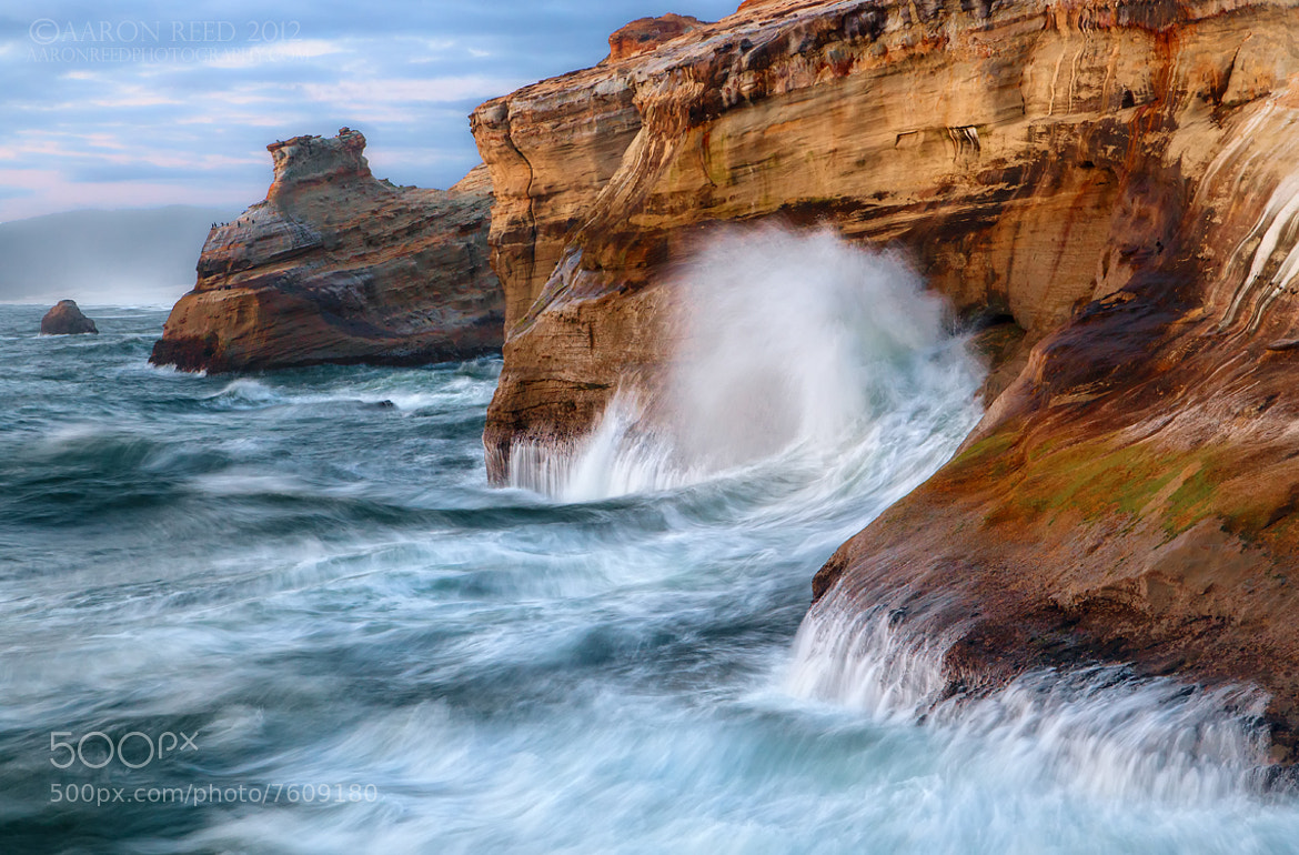 Photograph The Sea Serpent by Aaron Reed on 500px