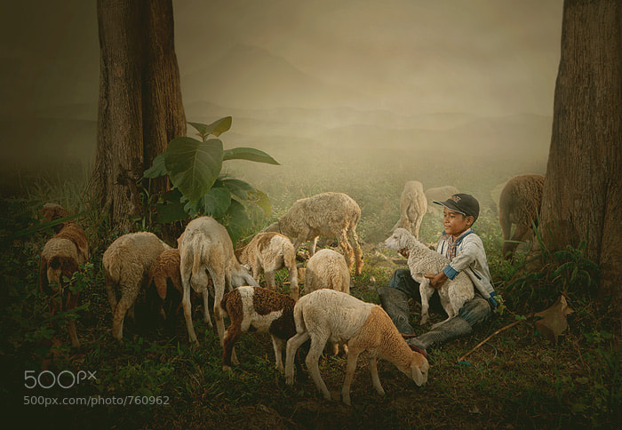 Photograph shepherd boy by Teuku Jody  Zulkarnaen on 500px