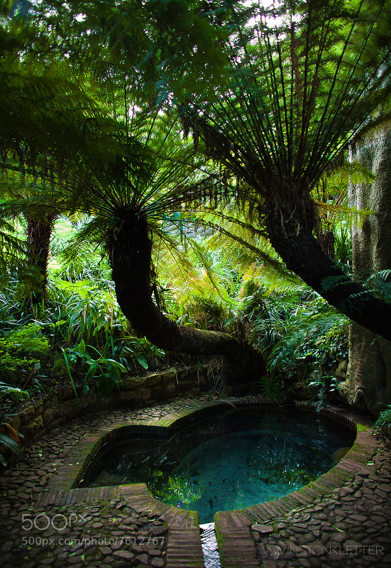 Photograph Lady Anne Barnard's Bath by Winston Kletter on 500px