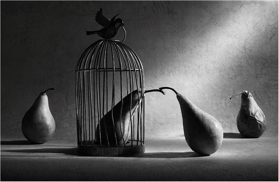 Photograph The prisoner by Victoria Ivanova on 500px