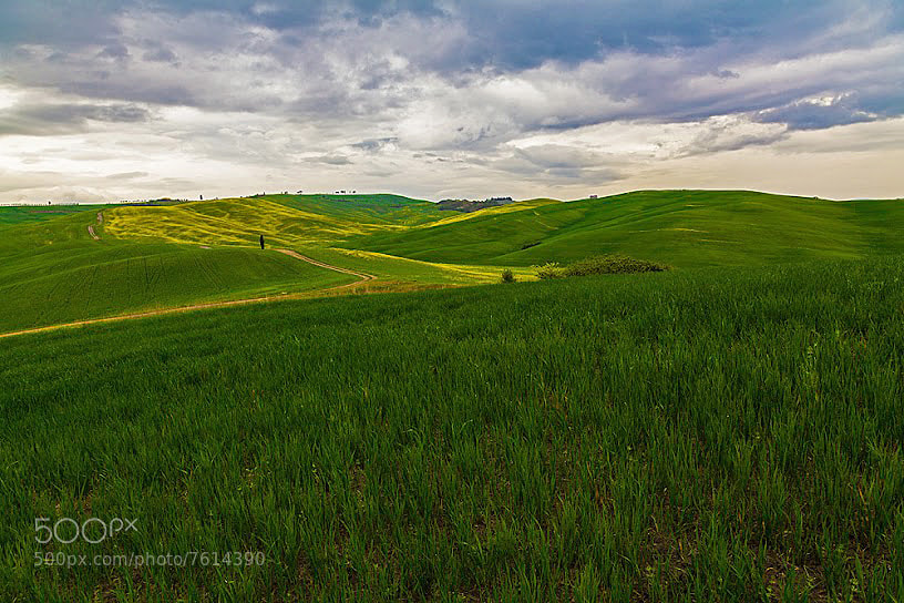 Photograph Val d'Orcia by Teo Teo on 500px