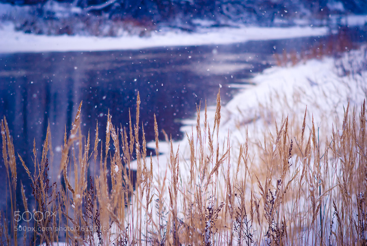 Photograph Winter river by Art V. on 500px