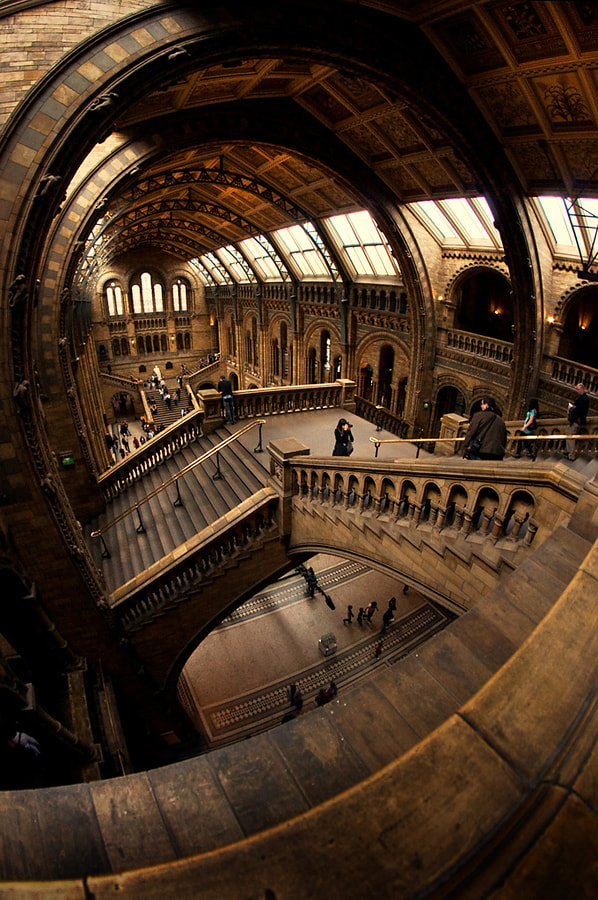 Photograph Natural History Museum by Martin Turner on 500px