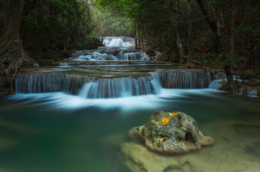 Photograph The stream by Sebleu  on 500px