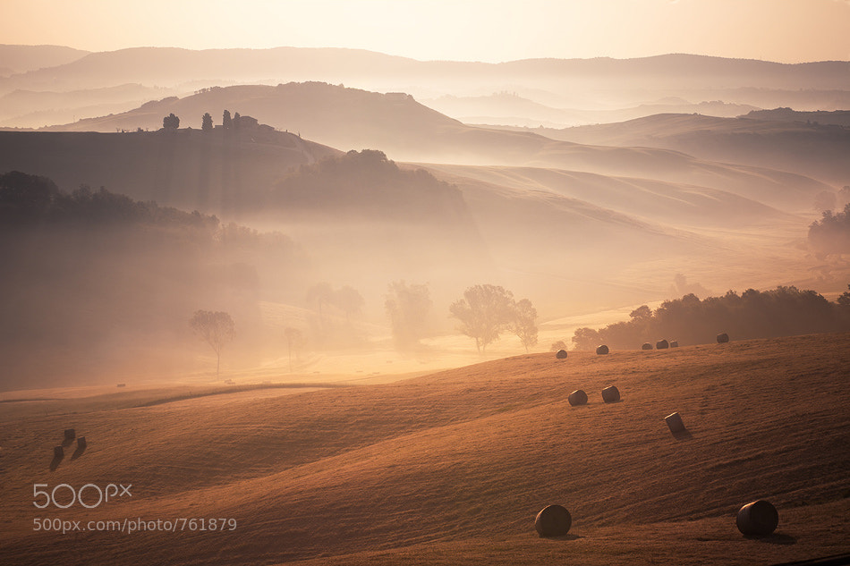 Photograph misty morning by Jens  Fersterra on 500px