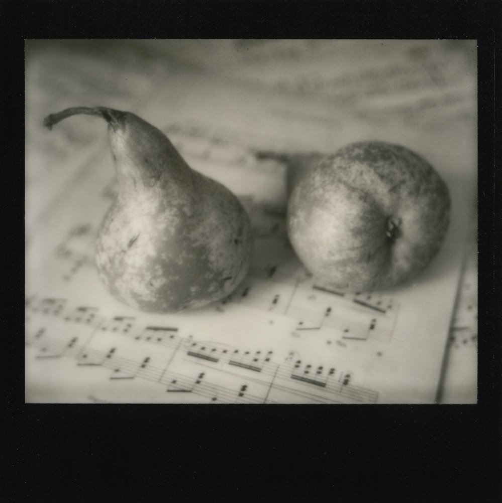 Photograph Pears by Britta Hershman on 500px
