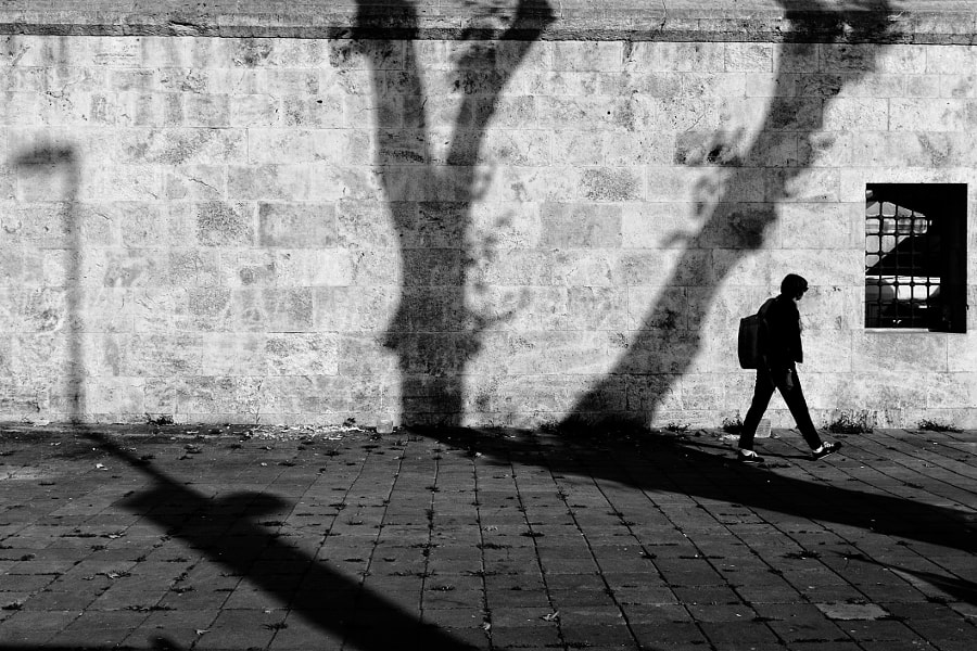 Shadow walk