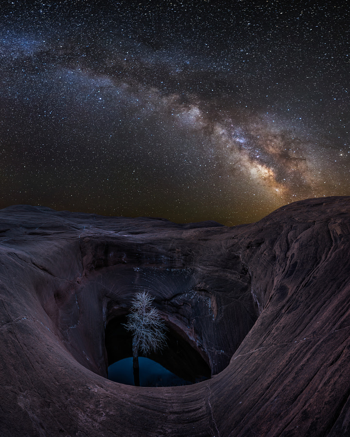 Photograph Life in the Void by Jared Warren on 500px