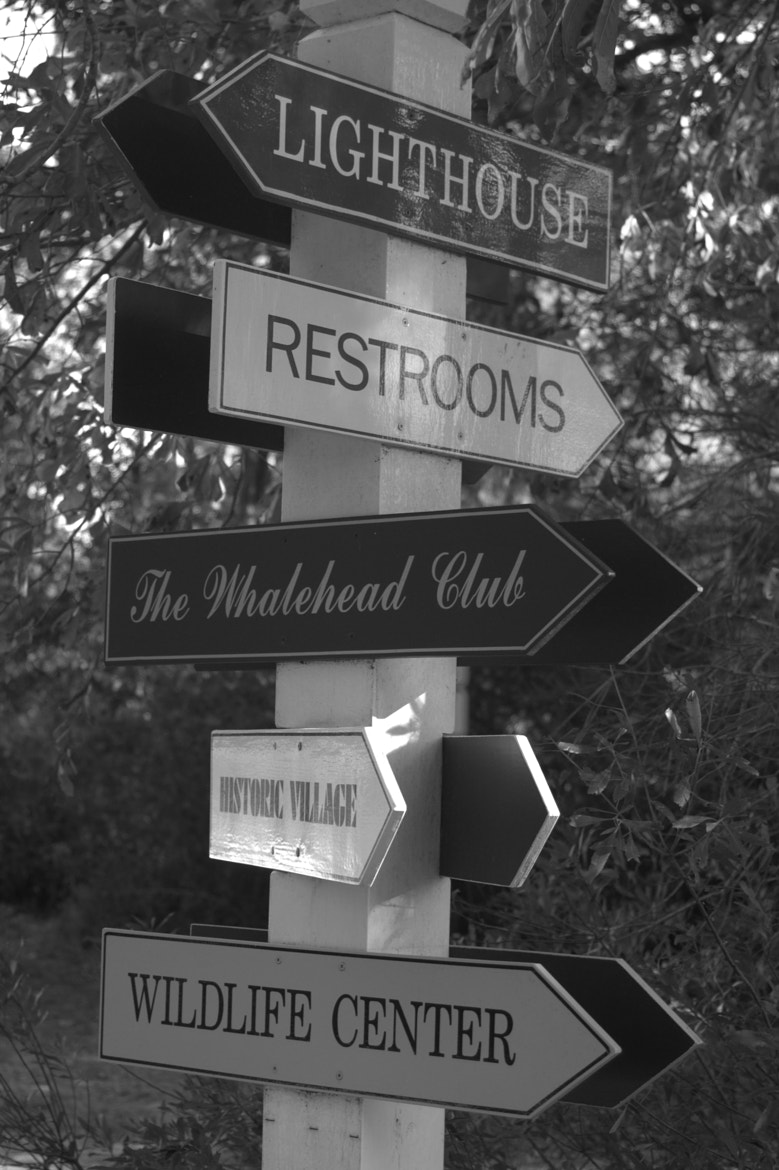 Photograph Signs everywhere by Tony Earle on 500px