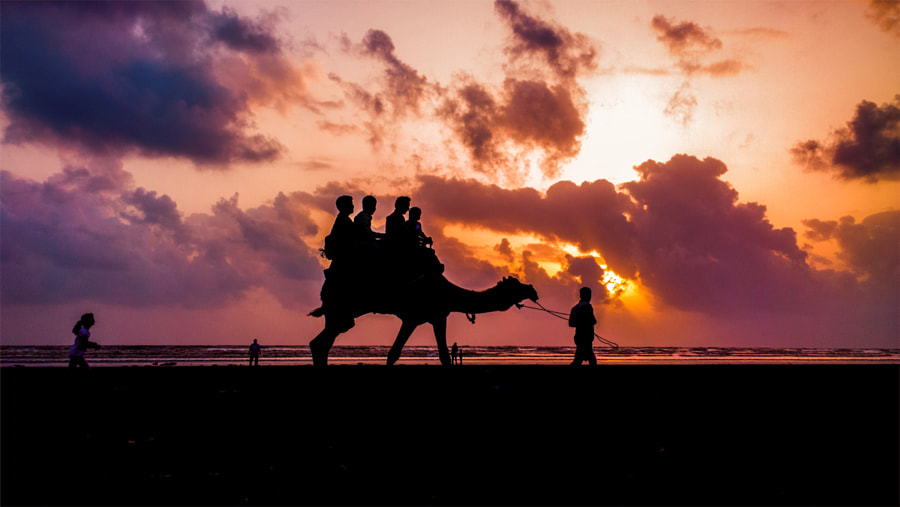 Photograph Sunset stroll by Husain Ujjainwala on 500px