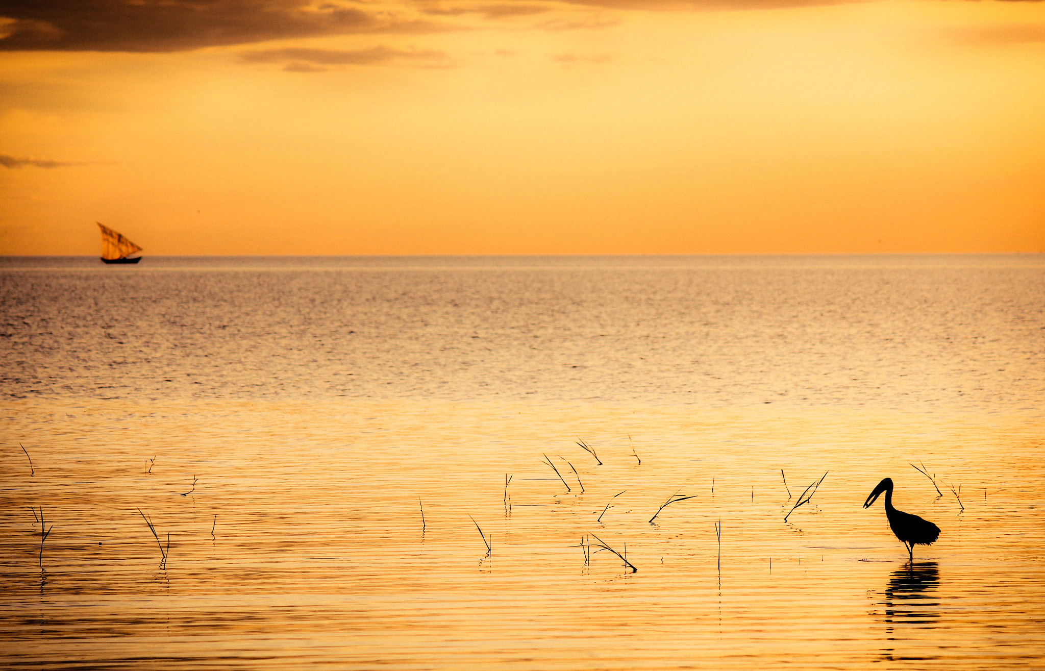 Photograph Silhouette waters by Heinrich Stofberg on 500px
