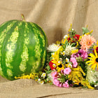 Постер, плакат: The melon and autumn flowers