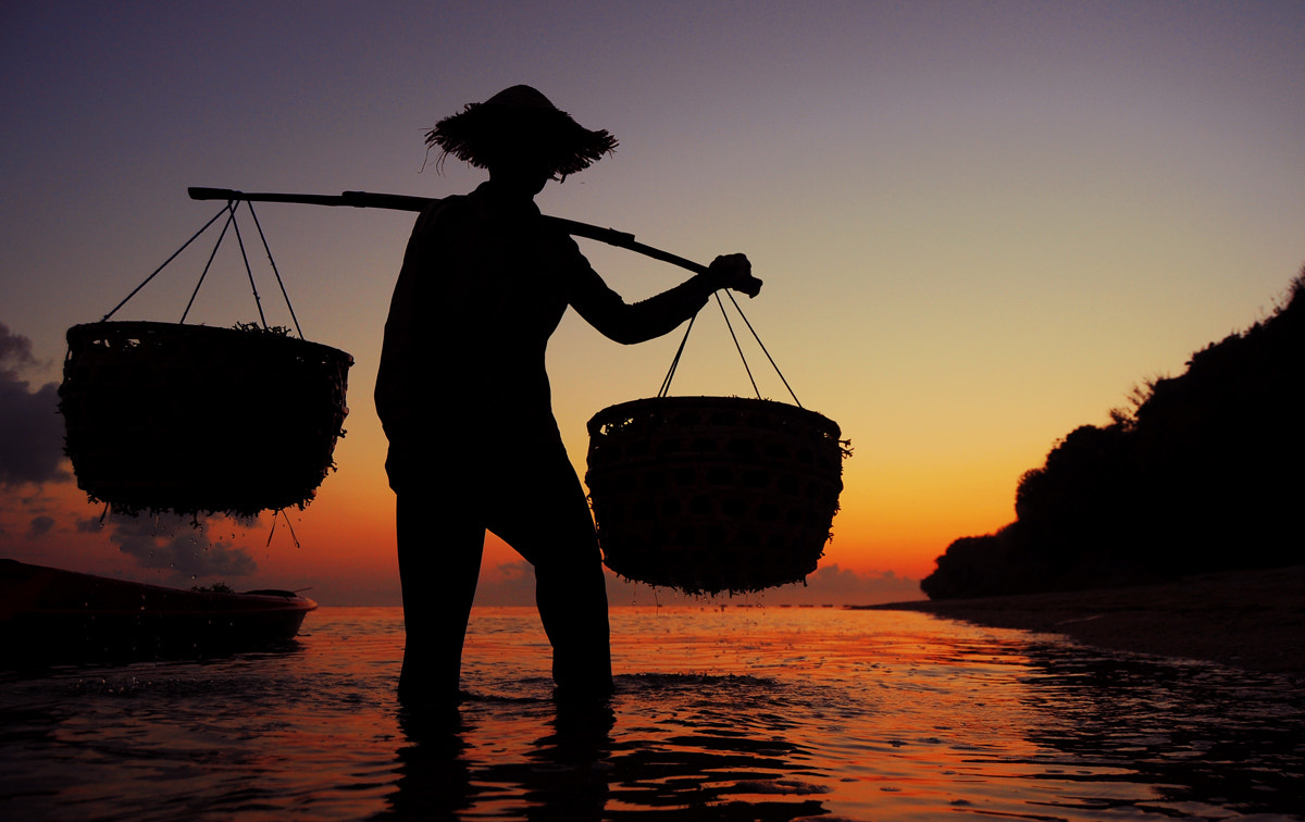 Photograph Seaweed Farmer - Silhouette by Keith Adrian on 500px