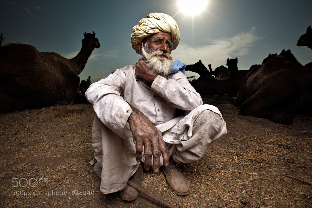 Photograph Camel Trader by martin prihoda on 500px