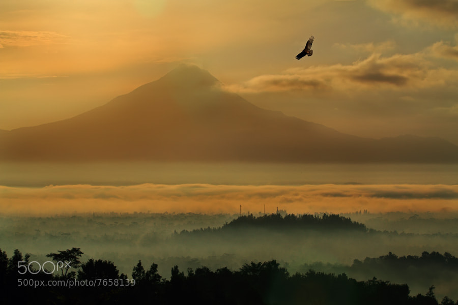 Photograph merapi mountain by shikhei goh on 500px