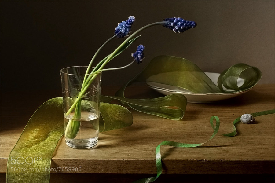 Photograph * by Elena Kolesneva on 500px