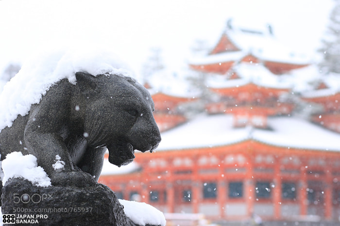 Photograph Kyoto snow by Kyoto Sanada on 500px