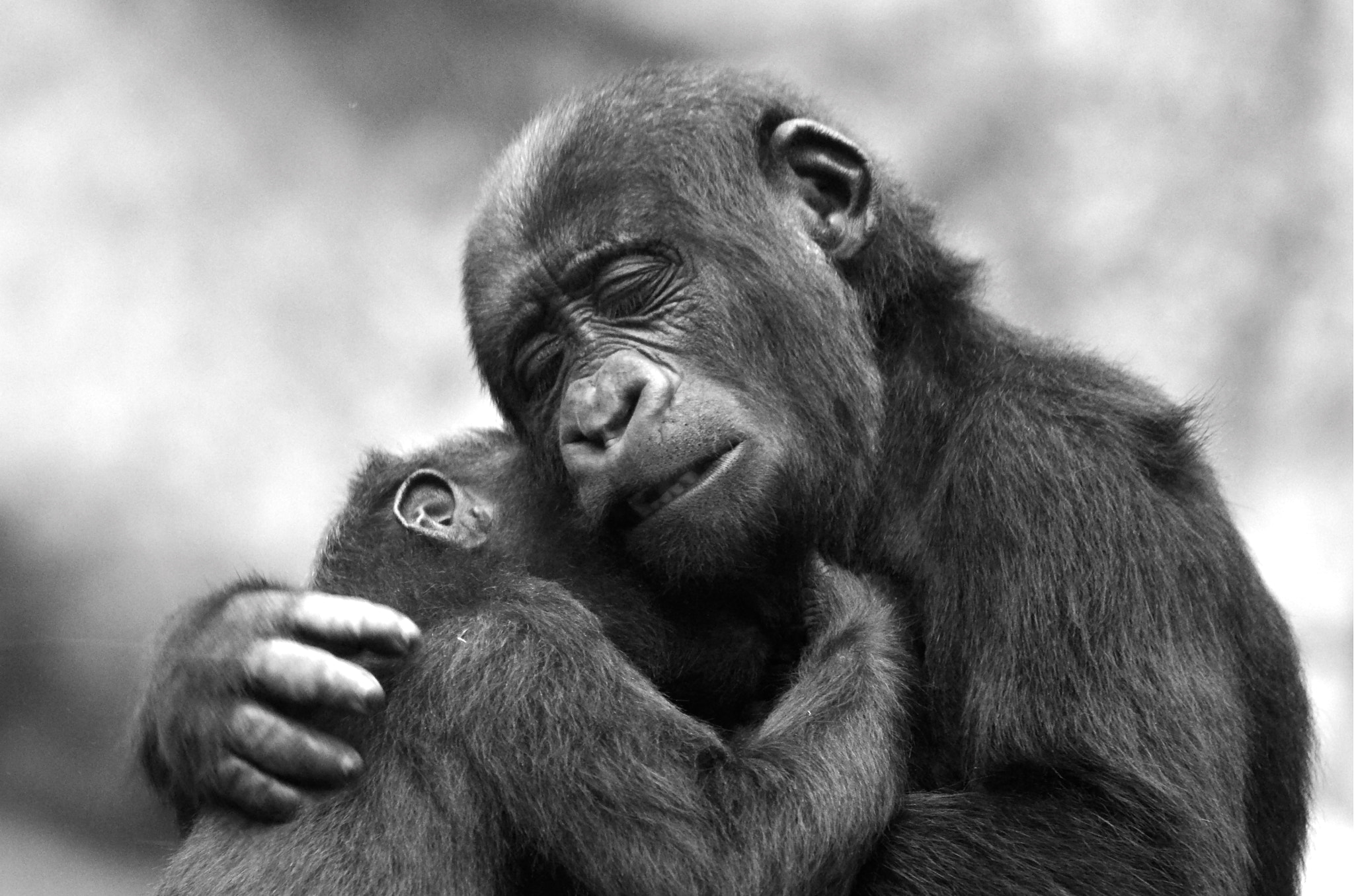 Photograph Natural Love by Aref JDEY on 500px