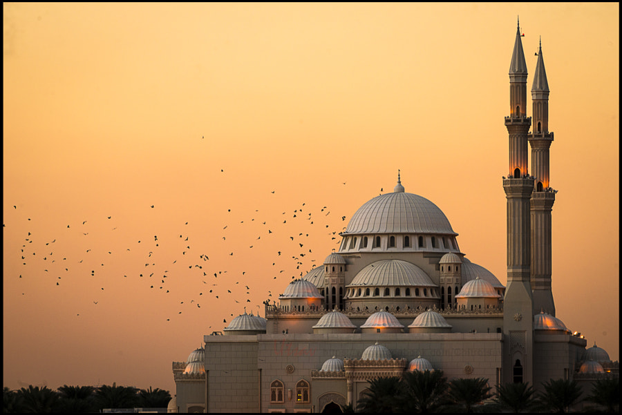 Photograph Mosque at Sharjah Cornish by Utsav Verma on 500px