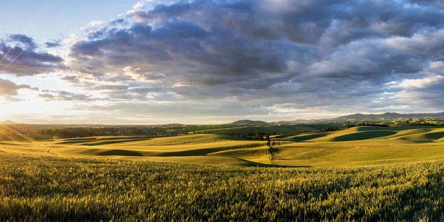Palouse Sunset Panorama