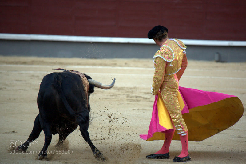 Photograph Corrida by Boris Sankisov on 500px