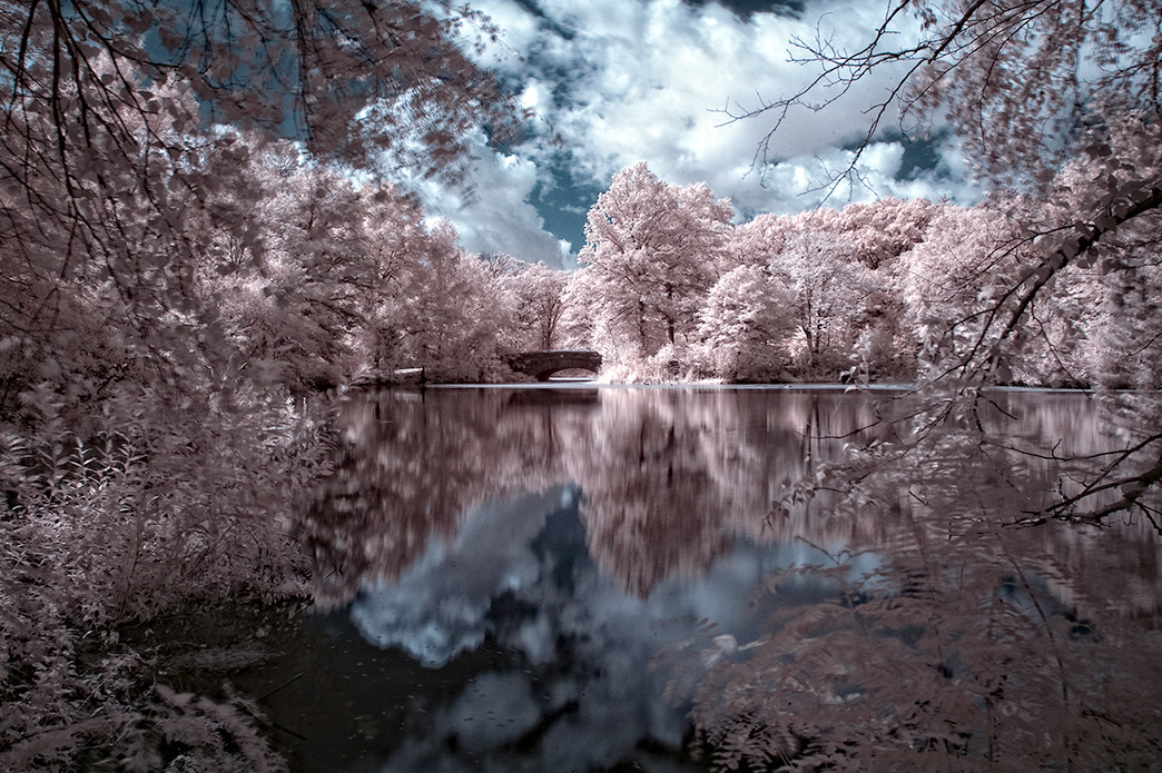 Photograph Reflections _2 by Dennis Perry on 500px