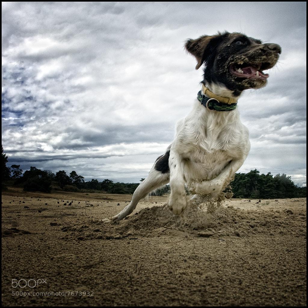 Photograph Action by Rene van Rijswijk on 500px