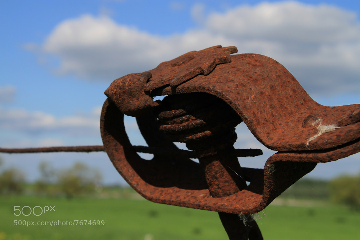 Photograph Rust by Marvin Peters on 500px