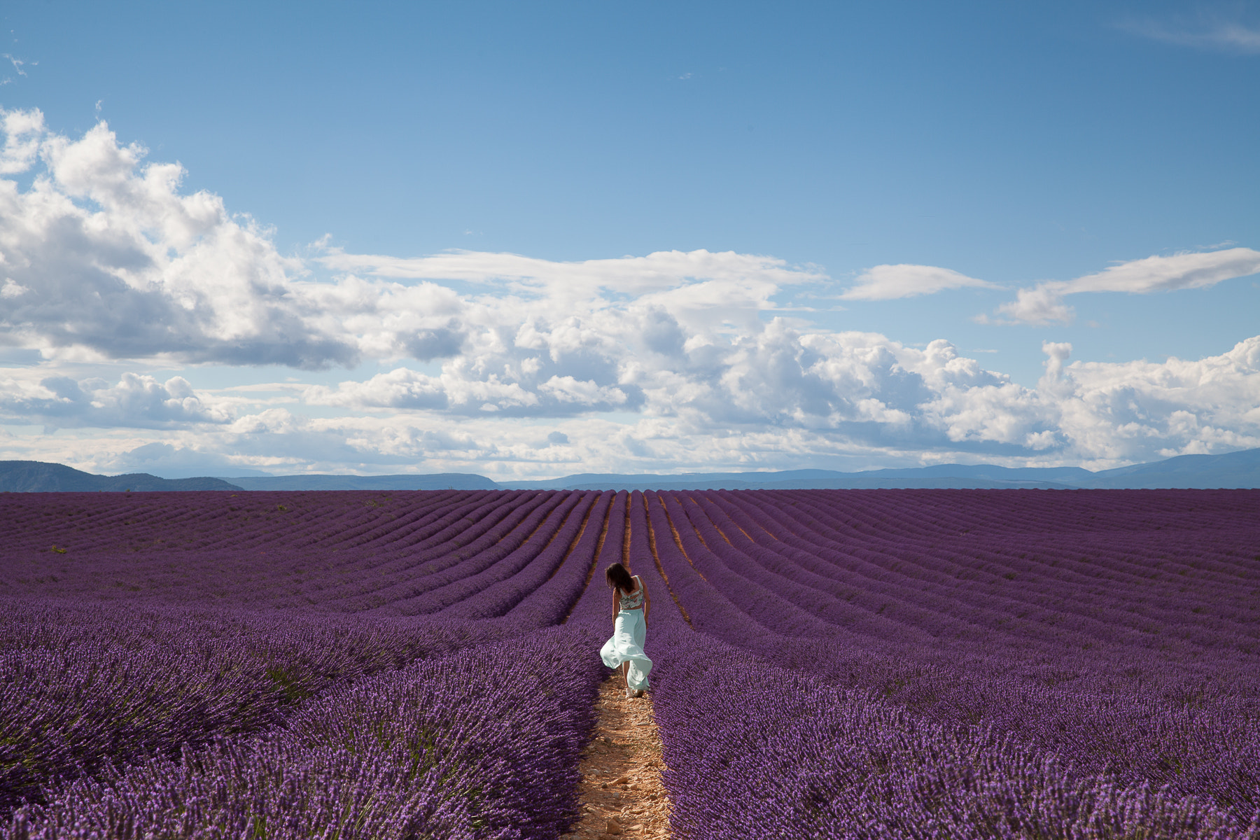 Photograph Going through my dreams in Valensole by Jenny Coppe on 500px