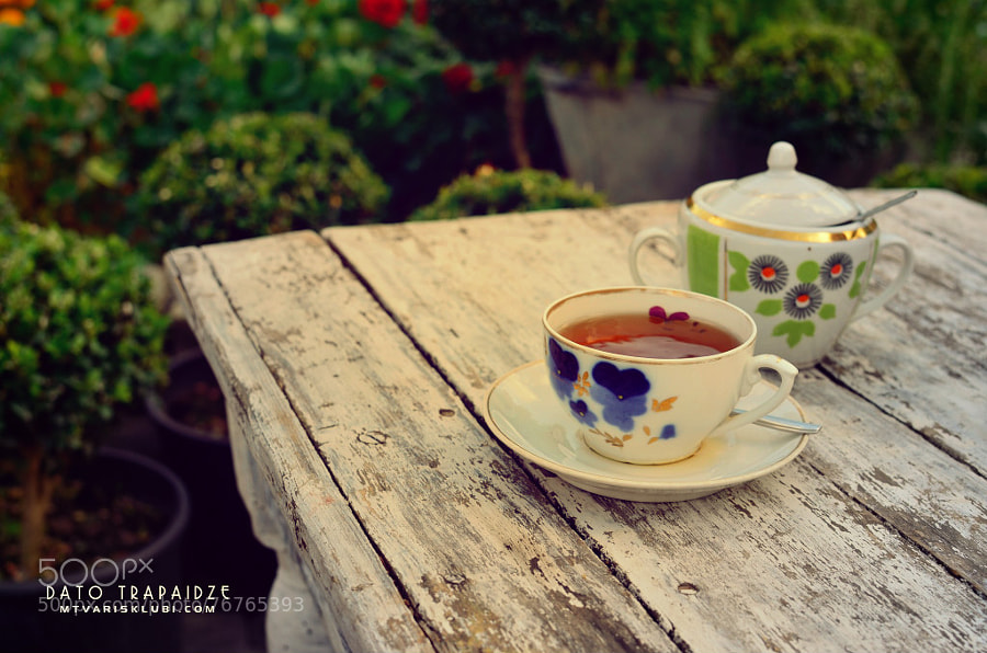 Photograph Tea in the summer evening by Dato Trapaidze on 500px