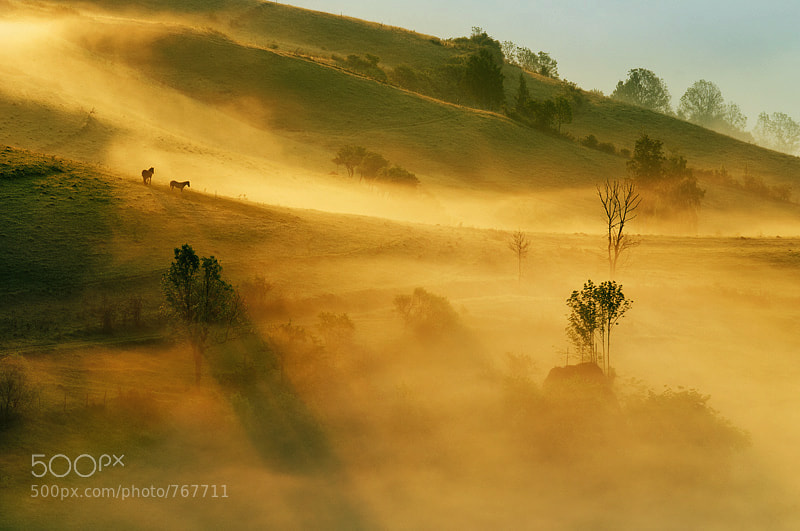 Photograph the pastures of heaven by Cornel Pufan on 500px