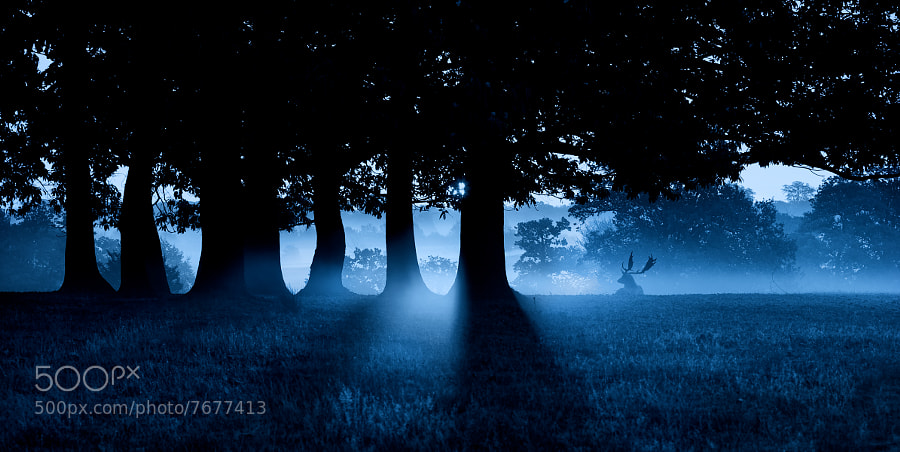 Photograph blue by Mark Bridger on 500px