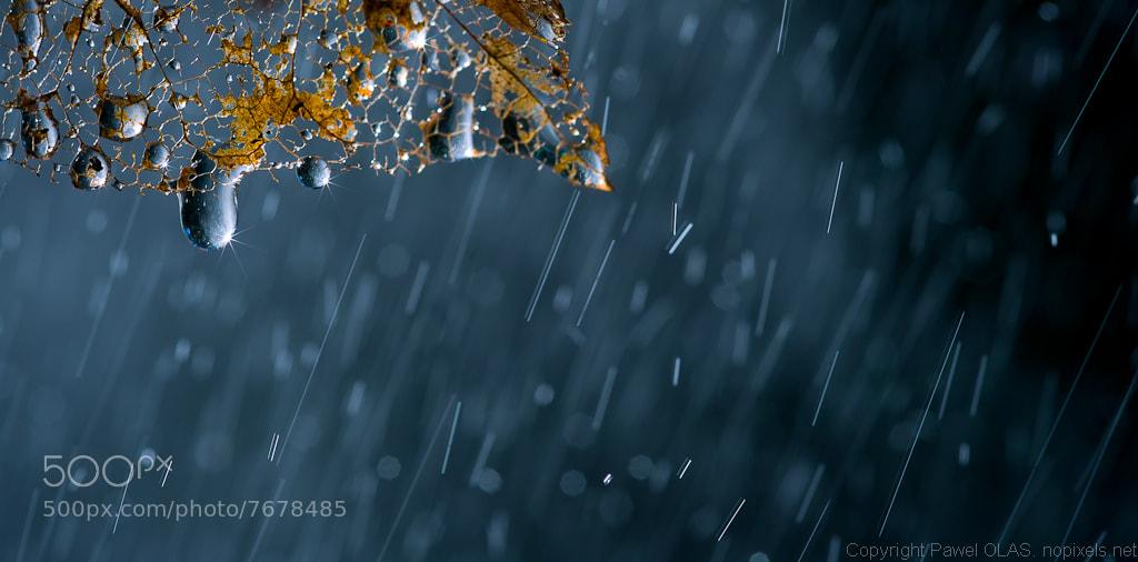 Photograph tears by Pawel Olas on 500px