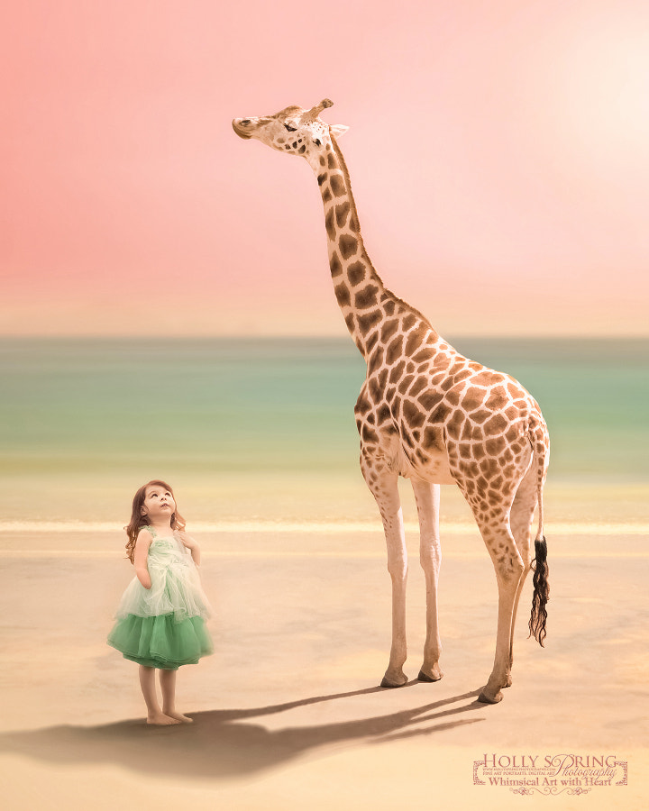 Photograph The Towering Giraffe by Holly Spring on 500px