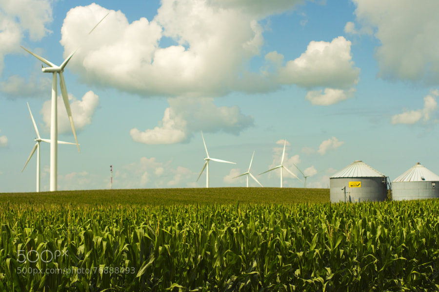 Photograph Central Iowa Wind Farms by Jeff Carter on 500px