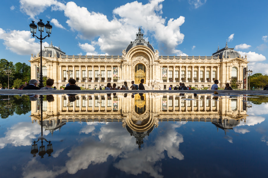 Puddle Mirror on Petit Palais