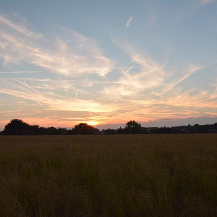 Sunset over the linen field.