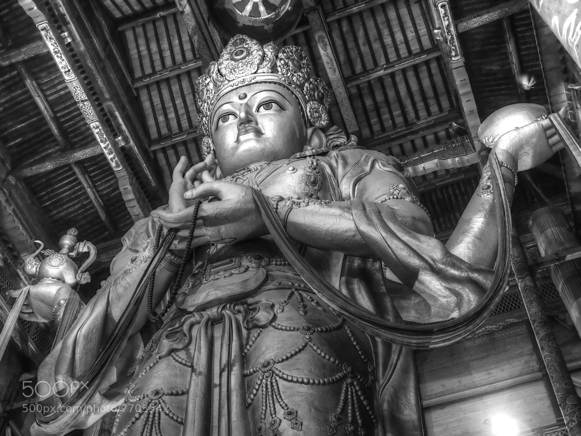 Photograph Buddha in Ulan Bator - Mongolia - Travel with a PEN by PaulEmmingsPhotography  on 500px