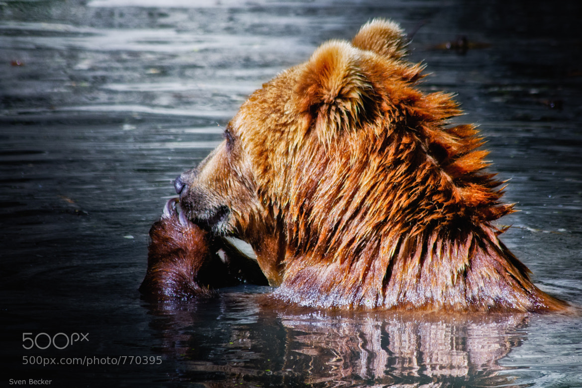 Photograph take a bath by Sven Becker on 500px
