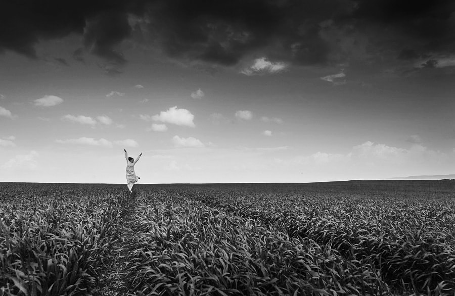 Photograph Black and white spring by Petar Krusev on 500px