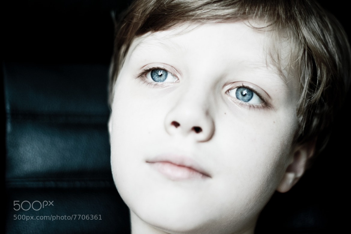 Photograph blue blood  by suits _get on 500px