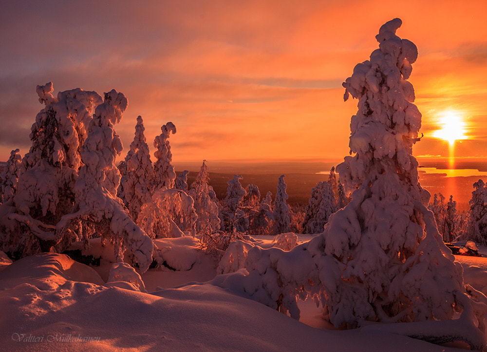 Photograph Morning frosty day ... by Valtteri Mulkahainen on 500px